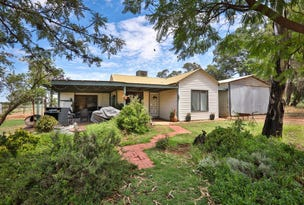 22 Psyche Bend Road, Irymple, Vic 3498