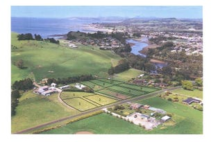 Lot 10, 22A Table Cape Road, Wynyard, Tas 7325