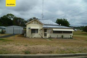 17 Bukkulla Street, Ashford, NSW 2361
