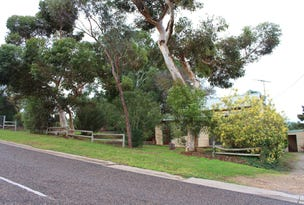 Lots 47 & 48 Williams Street, Mypolonga, SA 5254