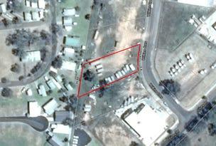 5 Wilkins Crescent, Mudgee, NSW 2850