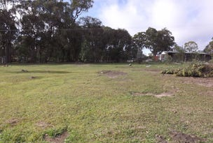 Lot 333, Torrington Road, Torrington, NSW 2371