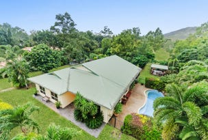 466 Forestry Road, Bluewater Park, Qld 4818