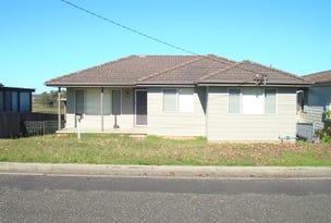 49 Redbill Drive, Woodberry, NSW 2322