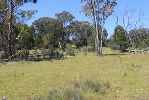 Lot 1 Catarrh Creek Road, Torrington, NSW 2371