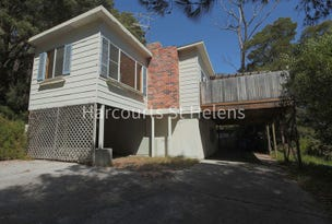 35 St Helens Point Road, Stieglitz, Tas 7216