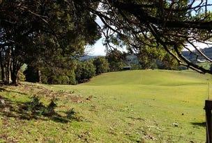 46 Frankcombes Road, Wilmot, Tas 7310