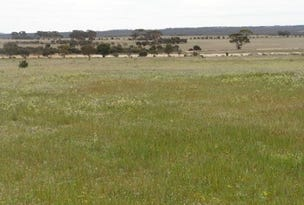 'Jiuliana' Lot 14 South Booran Road, Merredin, WA 6415