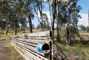 894 Sawpit Hill Road, Blessington, Tas 7212