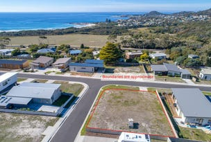 Lot 17 Sea Eagle Drive, Bicheno, Tas 7215