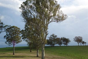 1721 Canyonleigh Road, Canyonleigh, NSW 2577