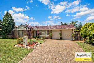 9 Heron Place, Hinchinbrook, NSW 2168