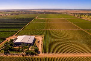 162 Moriarty Farms Road, Emerald, Qld 4720