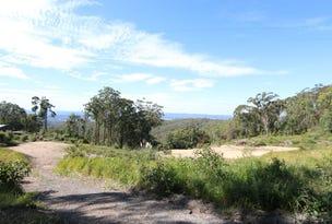 688 Duns Creek Road, Duns Creek, NSW 2321