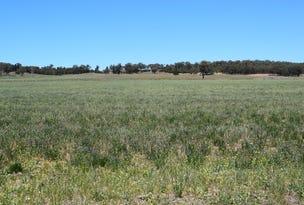 'Mount Beni', Merrygoen, NSW 2831
