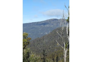 Lot 1 Myrtle Creek Road, Liffey, Tas 7301
