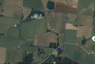 250 Swamp Road, Kindred, Tas 7310
