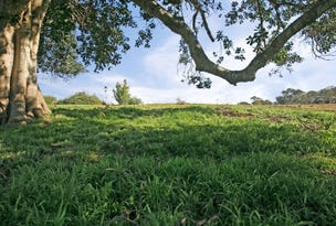 Lot 201 Esk Circuit, Maitland Vale, NSW 2320