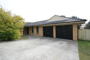 113 Budgeree Drive, Aberglasslyn, NSW 2320