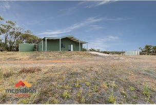 Lot 9606 Cunderdin-Quairading Road, Youndegin, WA 6407