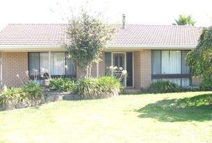 17 Ranken Street, Eglinton, NSW 2795