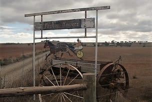 1041 Australian Plains Road, Australia Plains, SA 5374