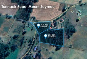 Lot 1 Tunnack Road, Mount Seymour, Tas 7120