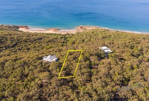 48 Bloodwood Avenue, Agnes Water, Qld 4677