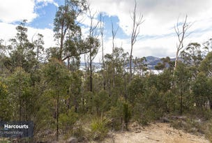 Lot 1 Eva Gully Road, Brooks Bay, Tas 7116