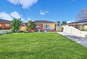 64  Maxwells Avenue, Ashcroft, NSW 2168
