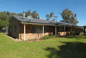 552 Kaputar Road, Narrabri, NSW 2390