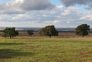 32R Albion Hills Road, Wongarbon, NSW 2831