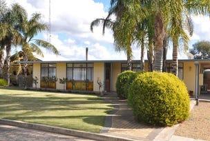 40 Elliott Road, Waikerie, SA 5330