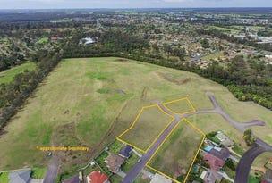Lots 67 - 77 Pyrus Drive & Malus Crescent, Taree, NSW 2430