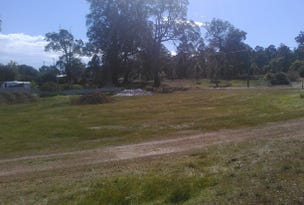 Lot 113, Blackwood Rd, Greenbushes, WA 6254