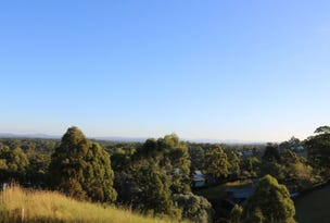 13 Hurdzanz Reach, Tallwoods Village, NSW 2430