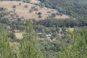 894 Reedy Creek Road, Silent Grove, NSW 2372