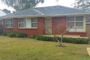 41 Lawn Avenue, Bradbury, NSW 2560