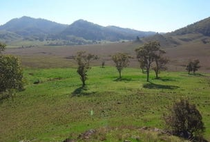 Lot 223, Sandy Creek Road, McCullys Gap, NSW 2333