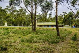 4 Brewis Place, Lake Leake, Tas 7210