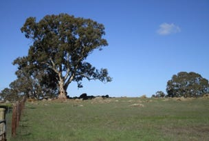 lot 22 Brinkworth Range Road, Tungkillo, SA 5236