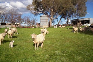 57 Mahers, Cookardinia, NSW 2650
