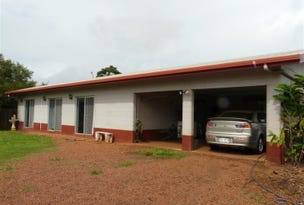 99 Rodgers Road, East Palmerston, Qld 4860