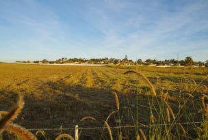 Lot 184, Excelsa Circuit, Rural View, Qld 4740
