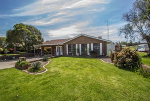 20 Pendula Street, Leeton, NSW 2705