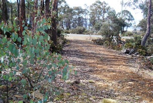 Lot 7, 21 Arthurs Lake Road, Wilburville, Arthurs Lake, Tas 7030