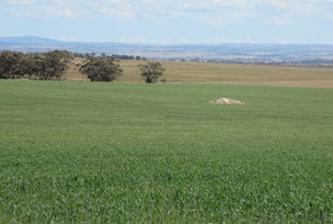 Lot 52 Army  Rd, Burdett, SA 5253