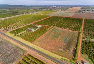 Farm 1823, Lot 2 Druitt Road, Griffith, NSW 2680