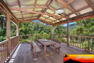 1213 Horseshoe Creek Road, Horseshoe Creek, NSW 2474