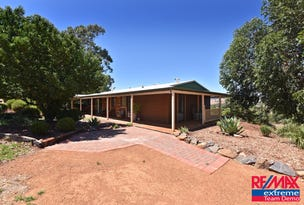 31 Spoonbill Close, Chittering, WA 6084